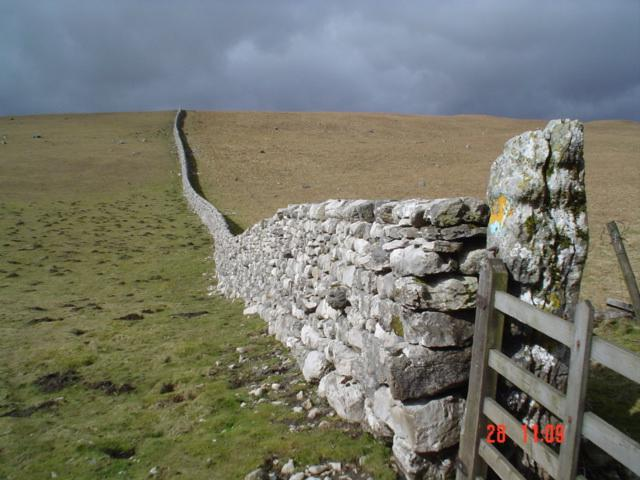 Drystone wall on Malham Moor.