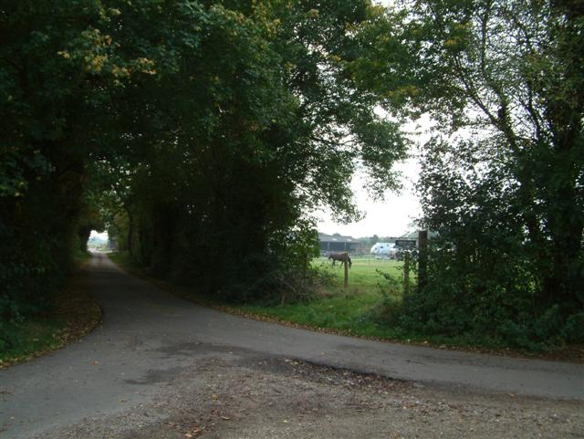 The Entrance to Frieze Farm