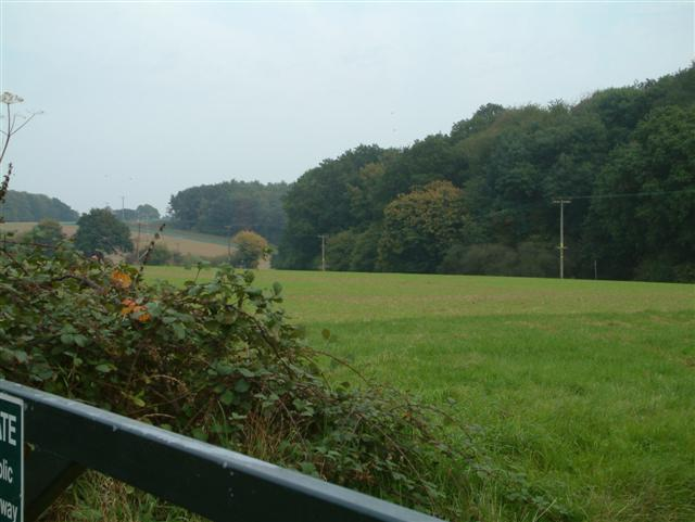 Looking towards Shiplake