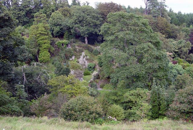 Coleton Fishacre gardens