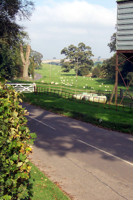 Cuxwold - Sheep Grazing