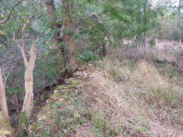 Scarp Slope of Bredon Hill