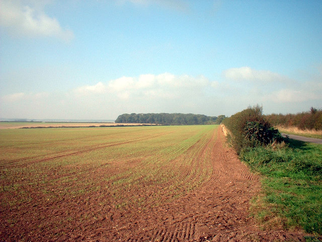 Looking towards Ash Holt