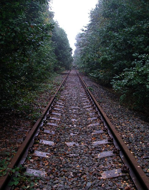 Old railway, Sherwood Pines Forest Park.