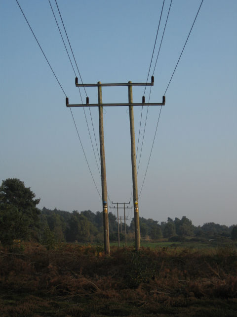 Power lines feeding Orford as they cross Tunstall Common
