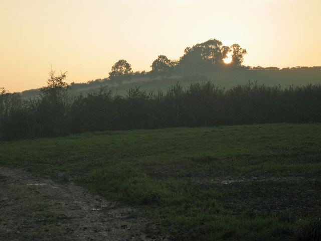 Late afternoon sunlight, near Cold Overton