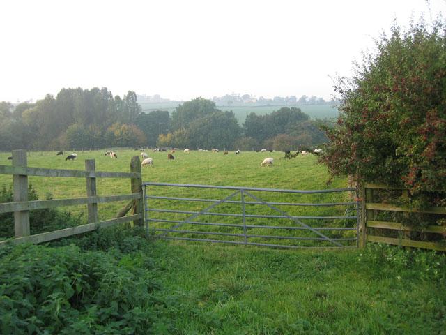 Farmland at Northfield Farm
