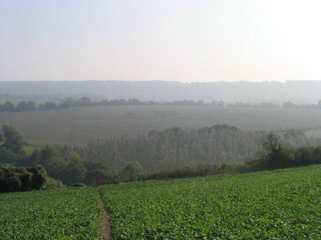 Huckswood, near Chalton