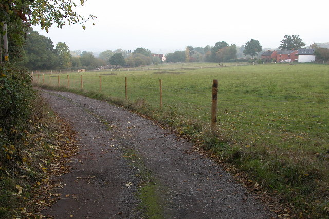 Track to Swinmore Common