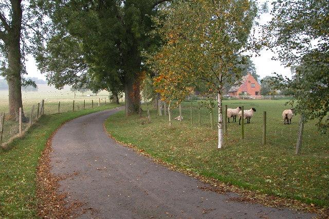 Driveway leading to Upleadon Farm