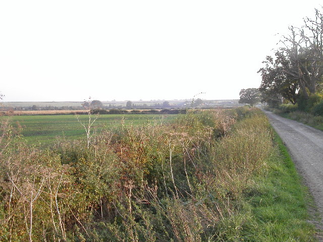 Fields north of Ardington Wick