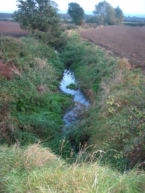The Rundle Beck, near Plungar