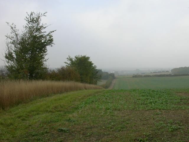 View from Milton Keynes Boundary Walk
