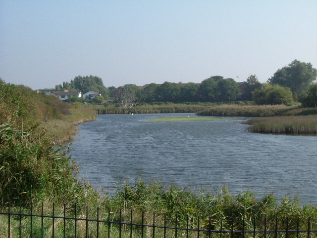 Pond in Southchurch Park