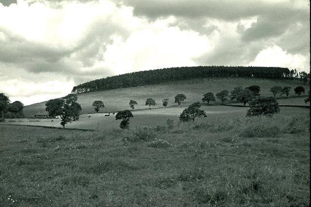 Blyth Hill viewed from Blyth Bank