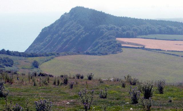 Peak Hill, near Sidmouth