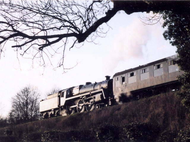 Train near North Farm, Ropley
