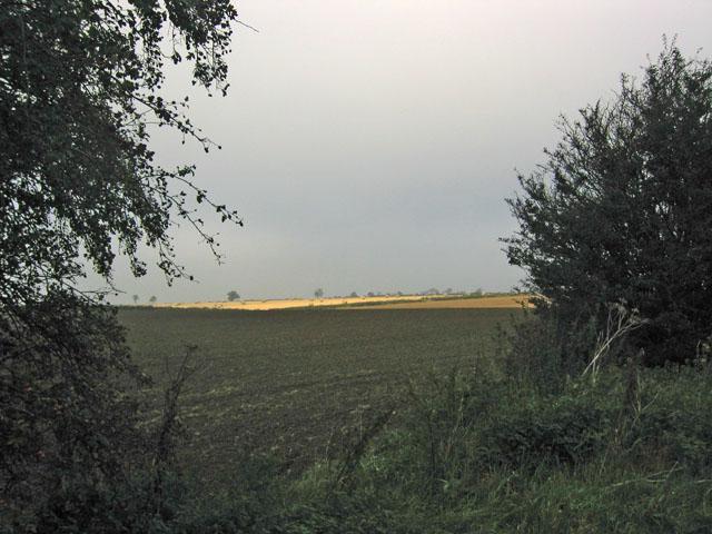 Farmland near Eastwell