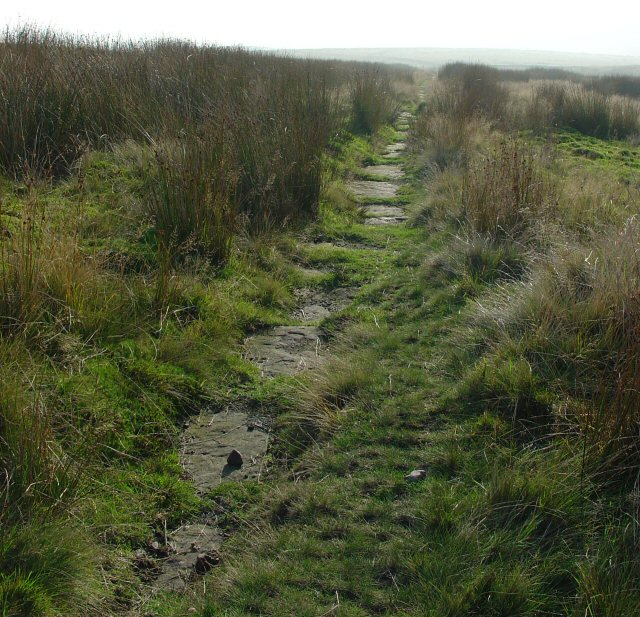 Long Causeway. Paved Public Bridleway on Crook Moor above Watergrove Reservoir