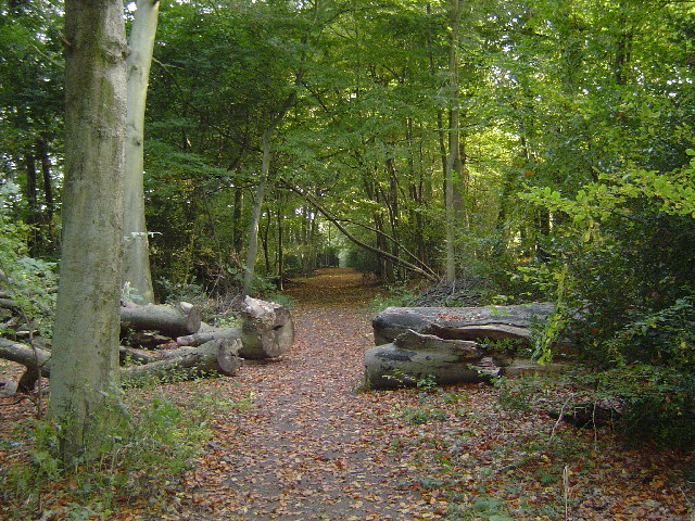 Mount Wood, Chenies