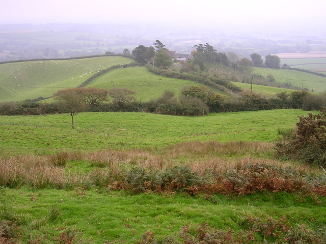 View towards Pilsdon Barn from Pilsdon Pen