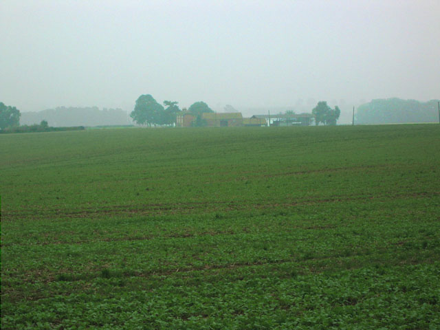 Bellemere Farm, near Eastwell