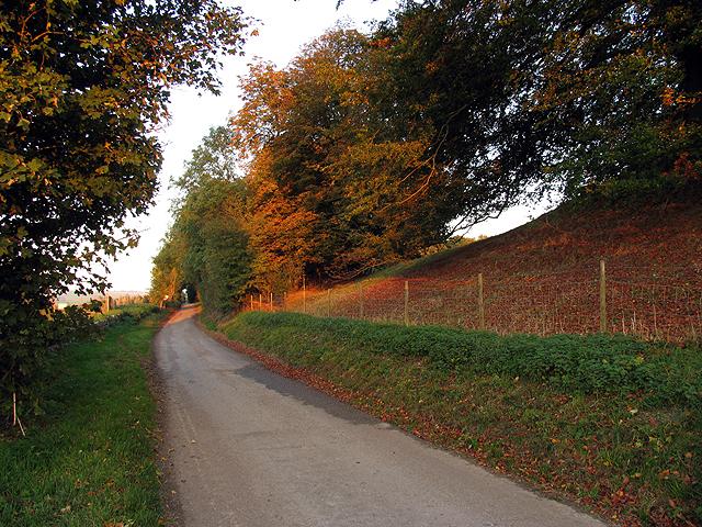 Autumn Leaves near Avebury