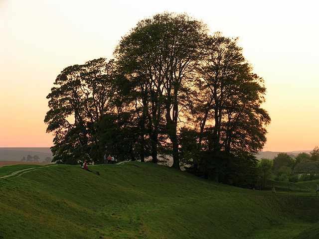 Silhouetted Trees at Avebury