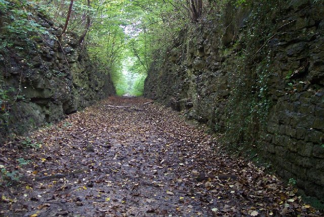 Disused Railway Cutting, Cadeby, South Yorkshire