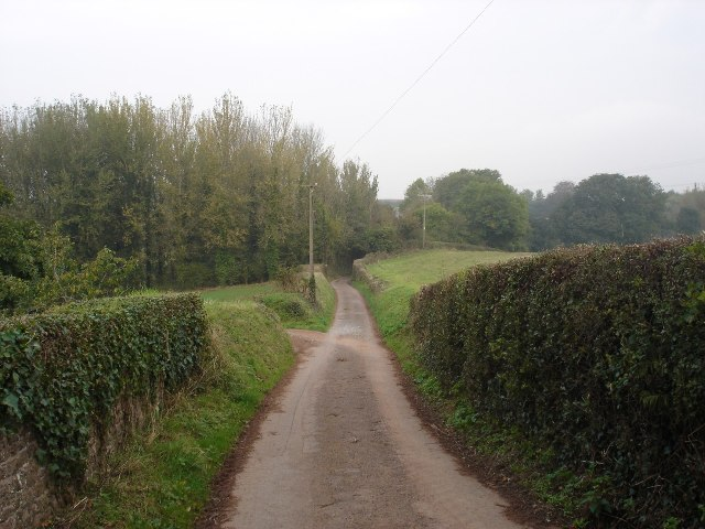 Lane to Aller Farm, west of Capton