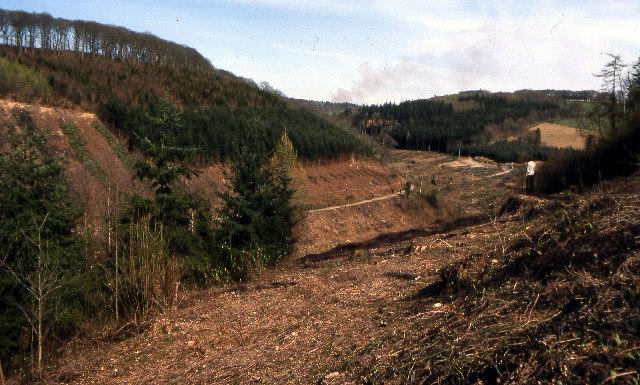 Milton Brook valley near Lopwell