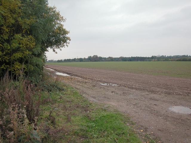 The Rea farmland