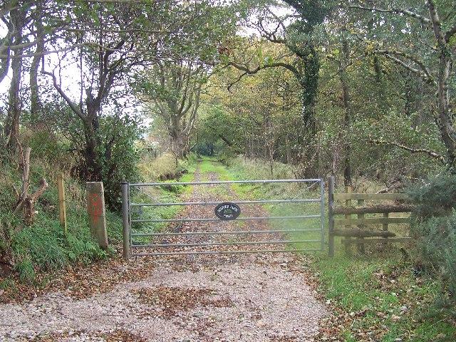 Road to Quarter Farm
