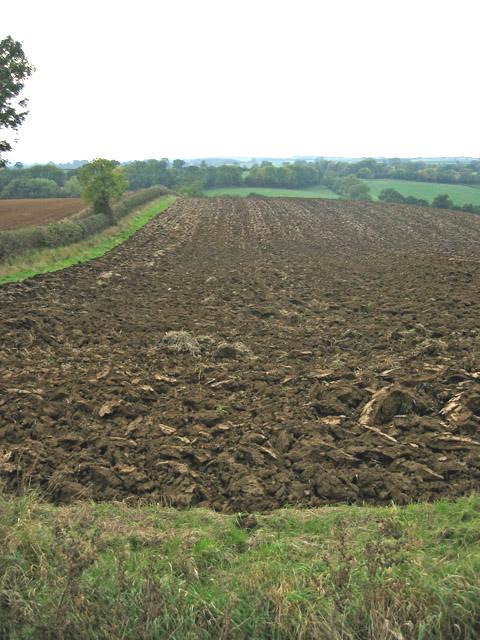 Farmland near Eaton, Leicestershire