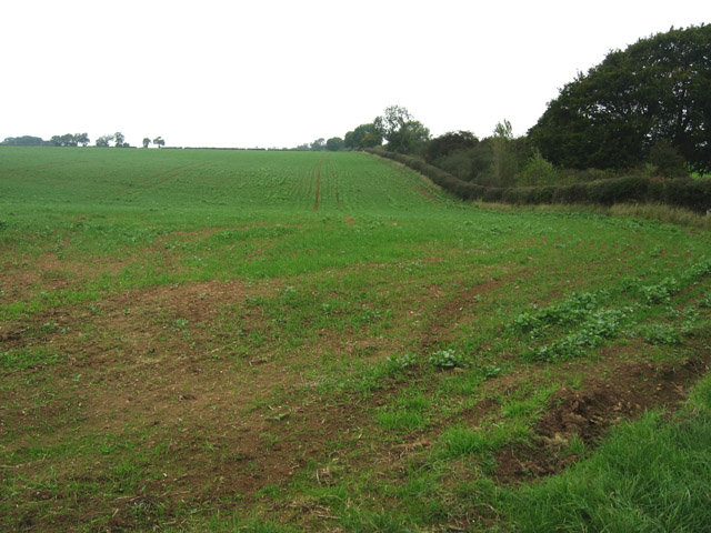 Farmland near Croxton Kerrial, Leicestershire