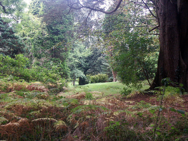 Upton Castle gardens