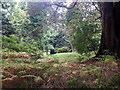 SN0204 : Upton Castle gardens by Ruth Jowett