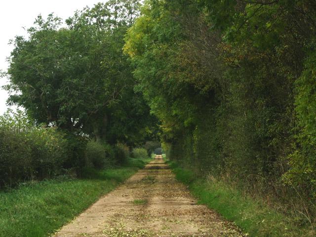 Track, near Saltby