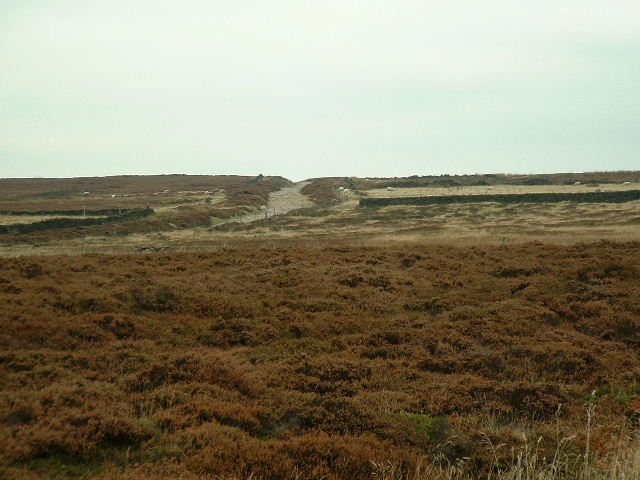 Track to Burbage Moor
