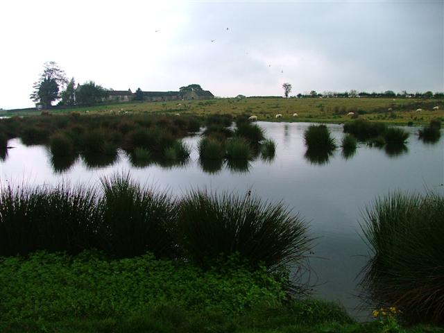 Pond, North of the A66 at Smallways