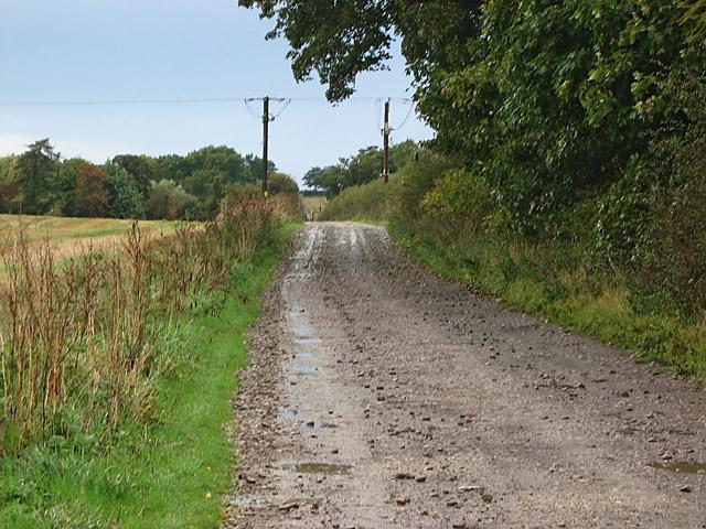 Farm track near Denton