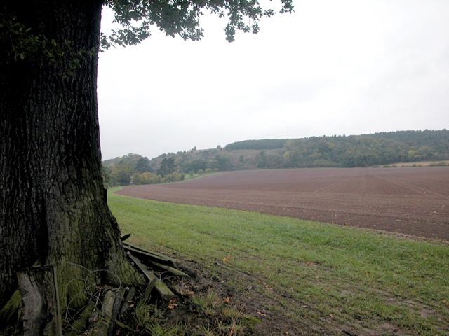 South of Haughmond Hill