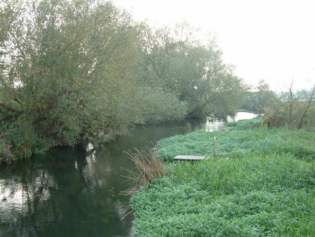 Borough Marsh