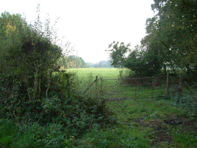 Fields in the flood plain