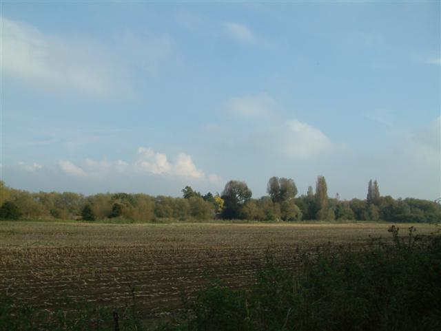 Charvil Fields