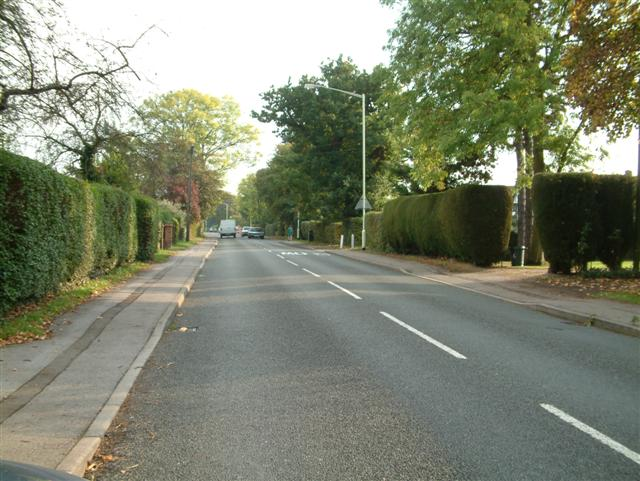 Butts Hill Road, Woodley Green