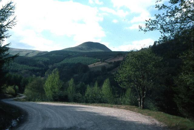 Forestry road, west of Talybont Reservoir