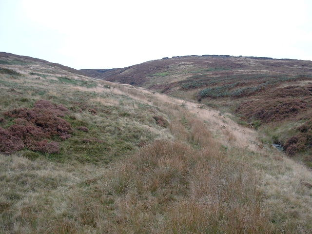 Coldharbour Moor