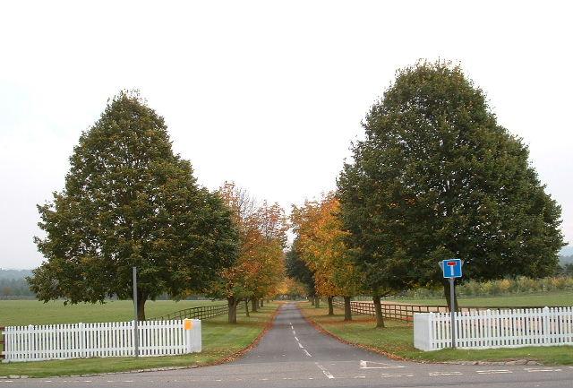 Avenue at Avington