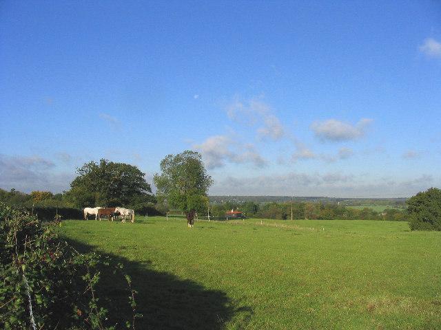 Horse Paddock, Brookmans Farm